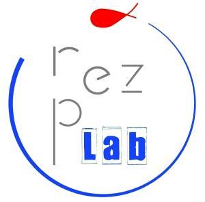 logo2 rezpez